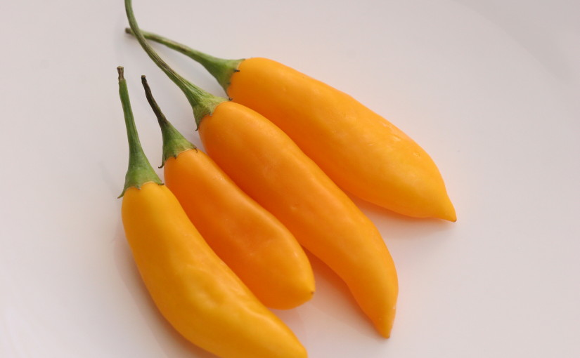 Aji Peppers