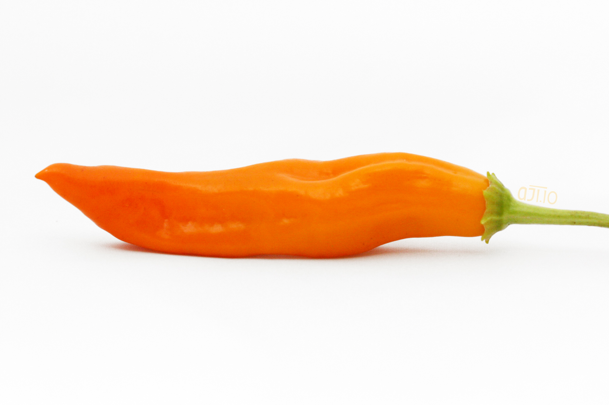 aji amarillo pepper a j