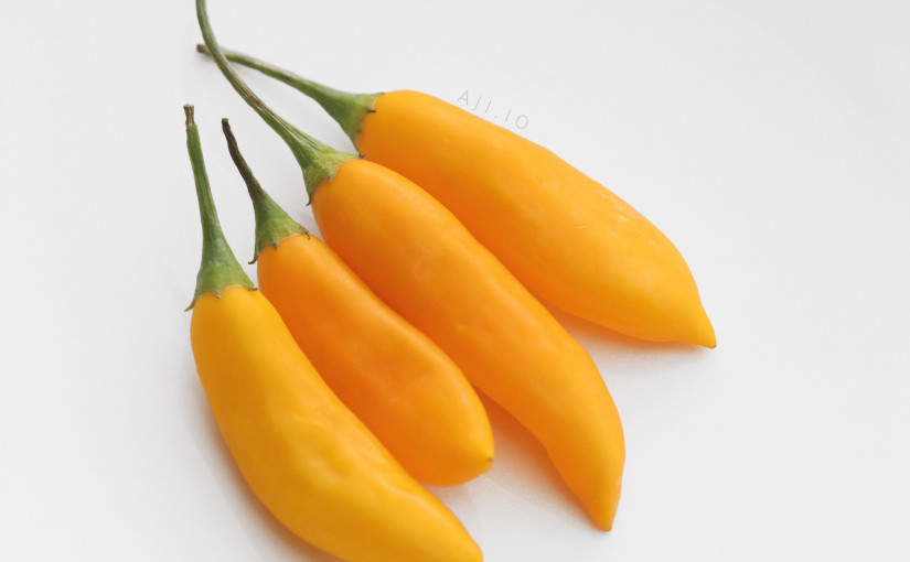 Aji Cito Pepper