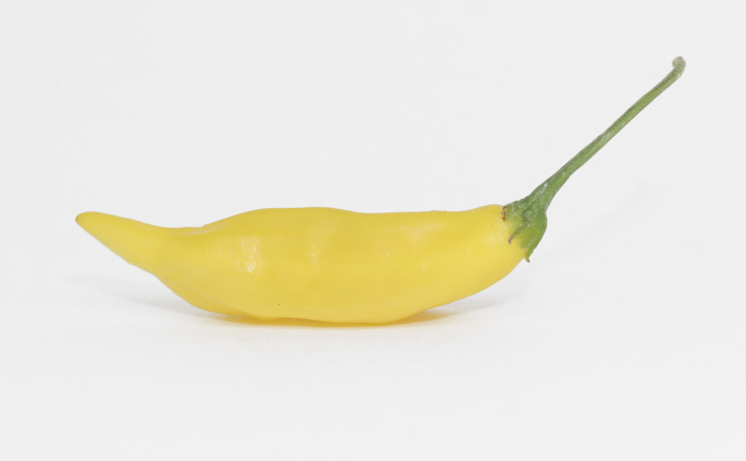 Aji Pineapple Pepper