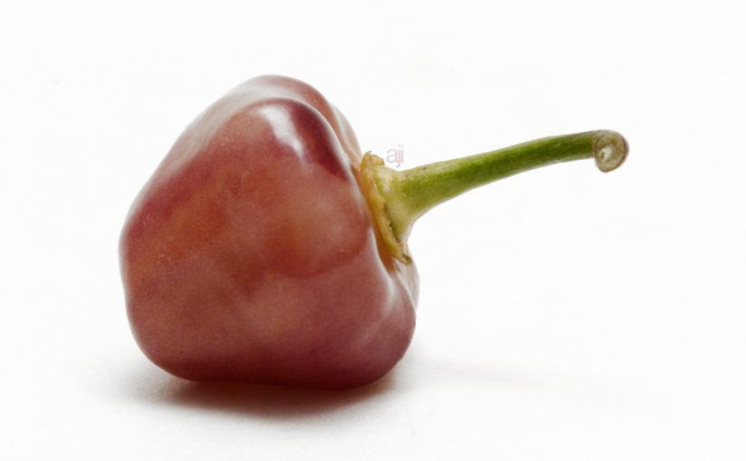Cheiro Roxa Pepper